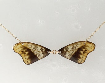 Real Cymothoe hermenia Wings Half Butterfly Necklace With Options