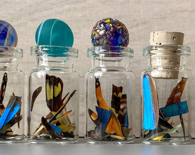 Real Butterfly Wing Confetti Jar Bottle XS Ethically Sourced Funds Conservation