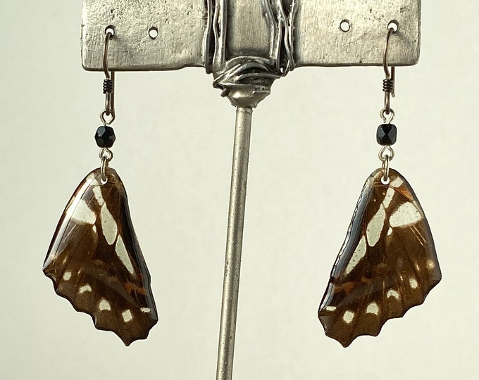 Real butterfly wing earrings Graphium doson onyx sterling silver Niobium