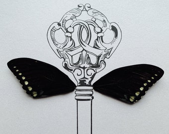 Vintage Key with Real Butterfly Wing Framed Art - Disabled Veteran Made Frame - Ink Illustrations by Holly Ulm