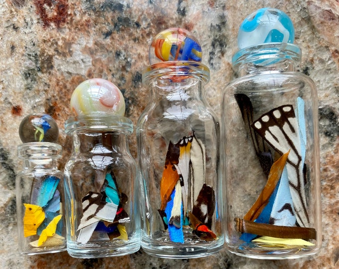 Real Butterfly Wing Confetti Jar Bottle Ethically Sourced Funds Conservation