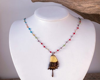 Real butterfly necklace Torquatus Swallowtail (Papilio torquatus) rainbow Swarovski beading with sterling silver.