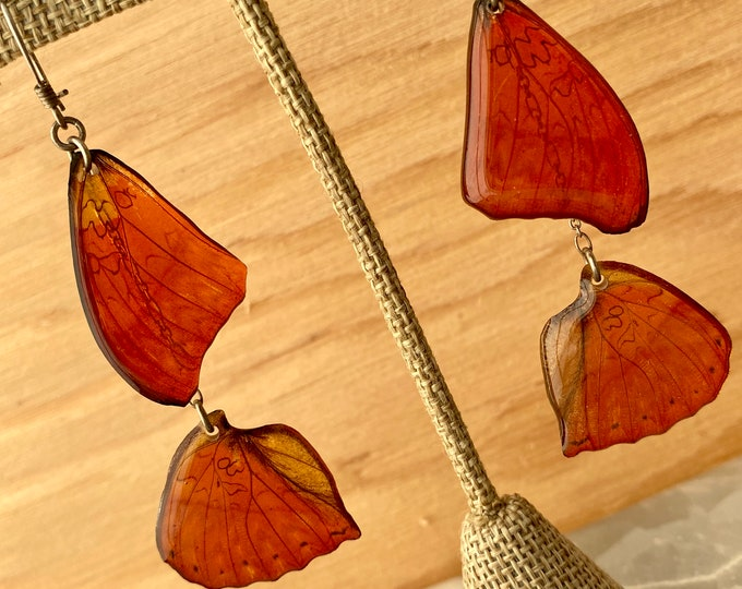 Real Butterfly Wing Earrings Whole Blood Red Glider Cymothoe sangaris Sterling Silver Gold Ball French Hook