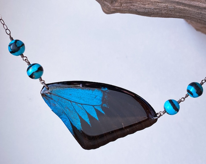 Real Butterfly Necklace Blue Mountain (Papilio ulysses) wing with sterling silver, turquoise banded with jet