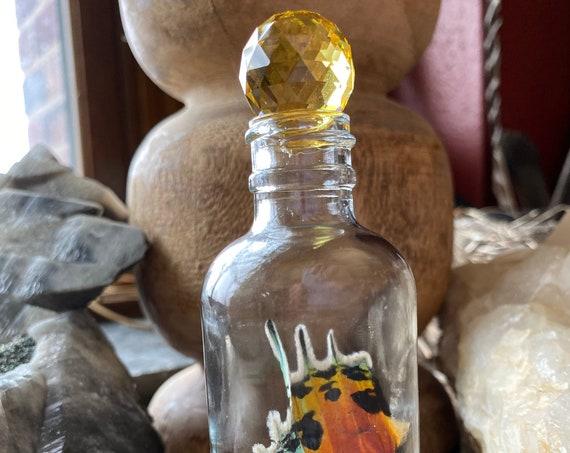 Real Sunset Moth Wing Swarovski crystal closure Pyrex bottle