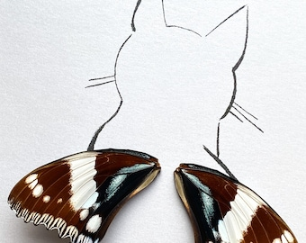 Cat Real Butterfly Wings Framed Art - Disabled Veteran Made Frame - Ink Illustrations by Holly Ulm