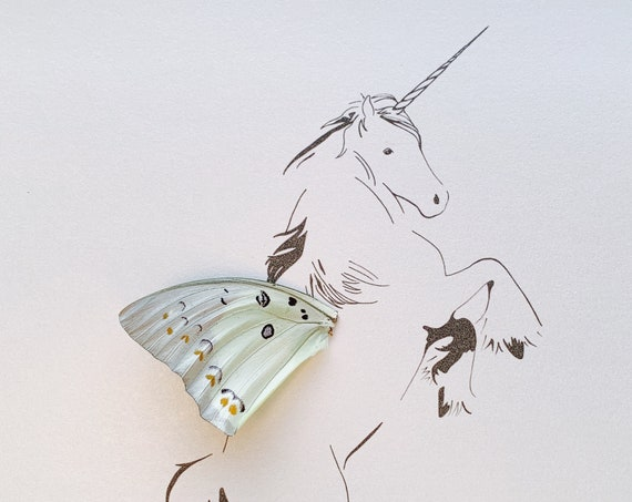 Unicorn Allicorn with Real Butterfly Wing Framed Art - Disabled Veteran Made Frame - Ink Illustrations by Holly Ulm