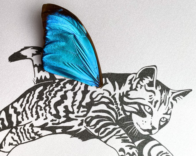 Tabby Striped Cat Real Butterfly Wing Framed Art - Disabled Veteran Made Frame - Ink Illustrations by Holly Ulm
