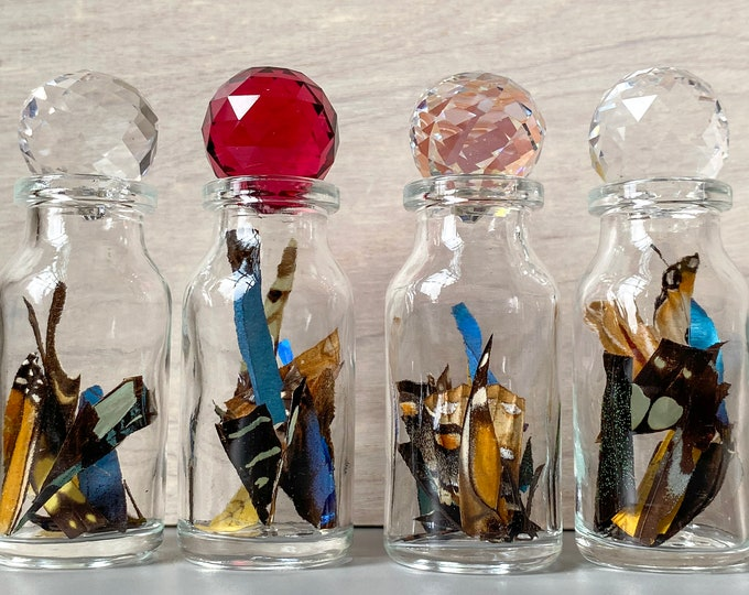 Real Butterfly Wing Confetti Jar Bottle Small Ethically Sourced Funds Conservation