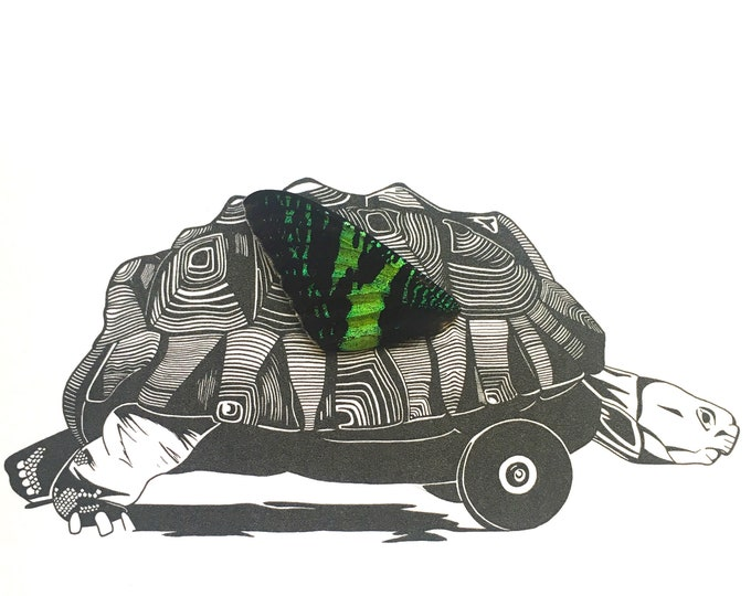 Tortoise with Wheels with Real Butterfly Wing Framed Art - Disabled Veteran Made Frame - Ink Illustrations by Holly Ulm