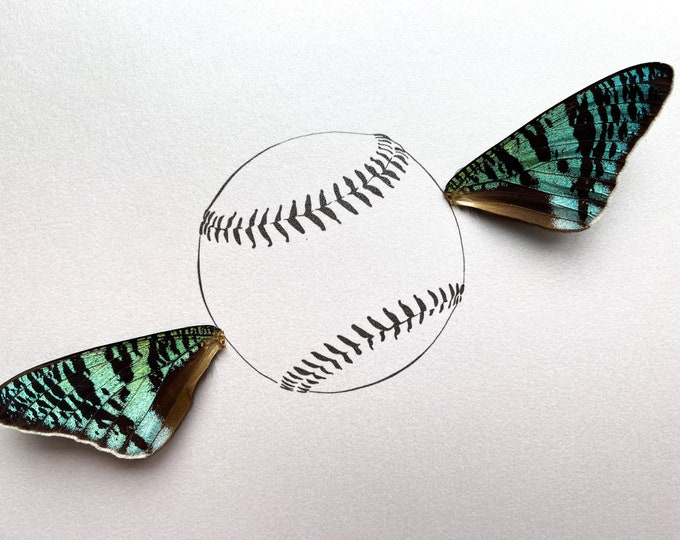 Fly Ball Baseball Real Butterfly Wing Art Disabled Veteran Made Frame Illustrations by Holly Ulm