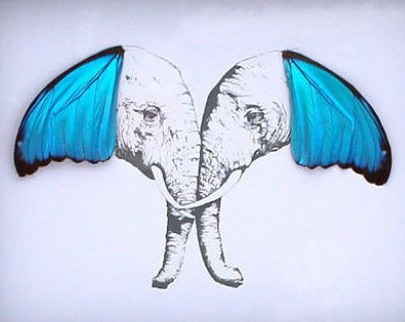 Elephant Pair with Real Butterfly Wings Framed Art - Disabled Veteran Made Frame - Ink Illustrations by Holly Ulm