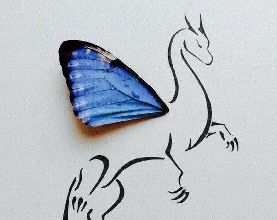Dragon with Real Butterfly Wing Framed Art - Disabled Veteran Made Frame - Ink Illustrations by Holly Ulm