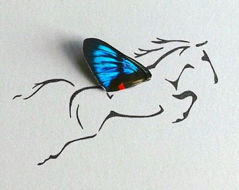 Pegasus Horse with Real Butterfly Wing Framed Art - Disabled Veteran Made Frame - Ink Illustrations by Holly Ulm