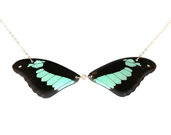 Real Papilio phorcas Wings Half Butterfly Necklace With Options