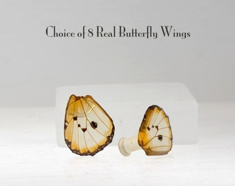 Real Butterfly Wing Ear Plugs - Gauges - Choice of 8 butterfly wings - Plug gauged to your choice of size