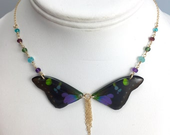 Real Graphium weiskei Wings Half Butterfly Necklace With Options