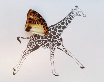 Giraffe with Real Butterfly Wing Framed Art - Disabled Veteran Made Frame - Ink Illustrations by Holly Ulm