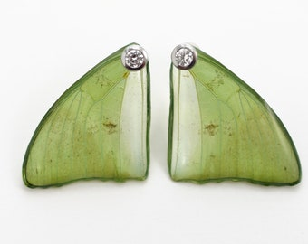 Real Charaxes eupale fore Wing Earrings With Options