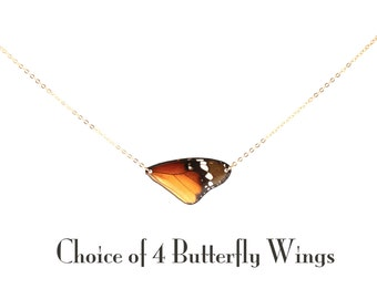 Gold Real Butterfly Wing Necklace - Choice of 4 Butterfly Wings - Wing Hung Inline