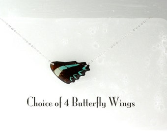 Sterling Silver Real Butterfly Wing Necklace - Choice of 4 Butterfly Wings - Wing Hung Inline