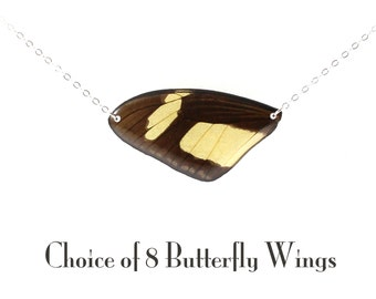 Sterling Silver Real Butterfly Wing Necklace - Choice of 8 Butterfly Wings - Wing Hung Inline
