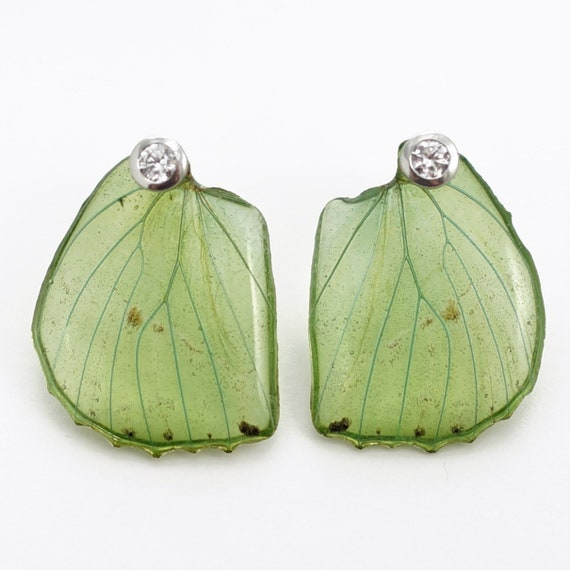 Real Charaxes eupale Hind Wing Earrings With Options