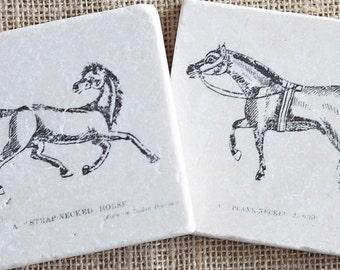 Horse Decor- Coasters, Equestrian Decor, Horse Gift, Equestrian Gift, Horse Tile, Horse Print, Horse Lover Gift, Horse Gift Idea, Horse
