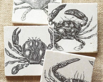 Beach Decor- Crab, Crab Decor, Beach House Decor, Crab Gift, Ocean Gift, Ocean Decor, Beach Cottage, Beach Shabby Chic, Beach, Sea Life,