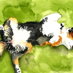 Watercolor Custom Pet Portrait Small - 5x7inches - Dog, Cat, Puppy, Kitty, Bunny, Guinea Pig, Rat, Piglet, and more!