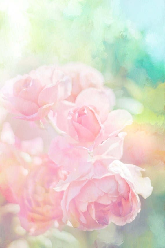 Pink Roses Photo Pastel Flower Digital Download Nursery Art Etsy