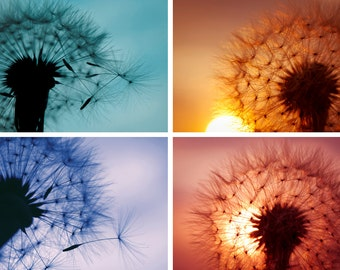 Dandelion photography Digital Download Set of 4 prints yellow teal blue art set dandelion wall art