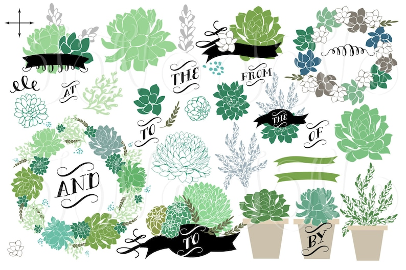 34 Wedding Succulents Floral clipart Small Commercial Use image 0