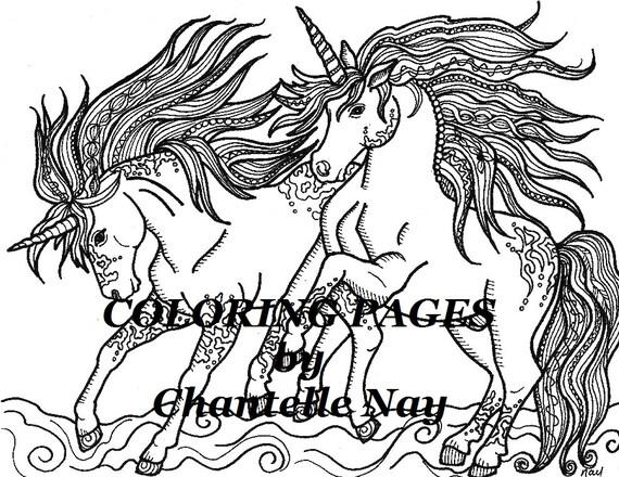Unicornios colorear página imagen para colorear adultos   Etsy