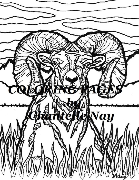 Bighorn Sheep Coloring Page - Get Coloring Pages | 738x570