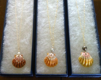 Sunrise Shell Necklace with Freshwater Pearl on 14k Goldfill Chain