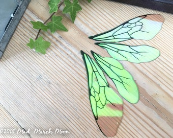"""Large Bee wings for craft, 4"""" iridescent transparent insect wings for crafting, for felting, collage, jewellery making and art dolls"""