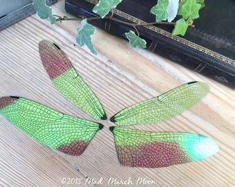 Large Dragonfly fairy wing pair for crafting,  Fairy wing set, transparent iridescent dragonfly wing pair, craft wings, diy wings