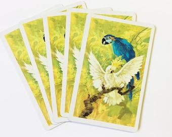 Playing Card Swap - Birds - Vintage - Set of 6