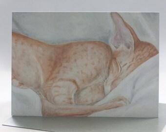 Oriental Cat Fine Art Greeting Card - Blank Inside