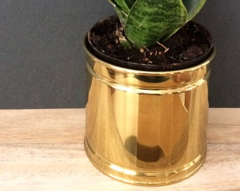 brass planter / succulent pot