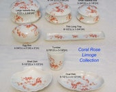 French Limoges quot Coral Rose quot Dresser Tray, Trinket Box, Egg Box, Isabella Box, Shell Oval Dish, Tumbler Cup