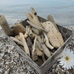 "Large Bulk Driftwood, 100 Driftwood Pieces Approximately 2""-12"", Drift Wood Supplies for Crafts, Beach Wedding Decor, Lake House Decor"