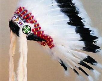 Warbonnet Headdress Head Dress indian Regalia Pow Wow Tribal