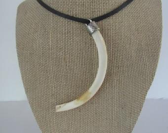 Beaver Tooth/Tusk Pendant Necklace Leather Animal Bone Teeth Jewelry N2028
