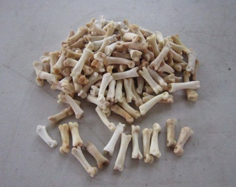 20 Coyote Toe/Foot Bone Metatarsals Bones Craft Supplies Hairpipe Bone Beads Tribal Jewelry Animal Bones