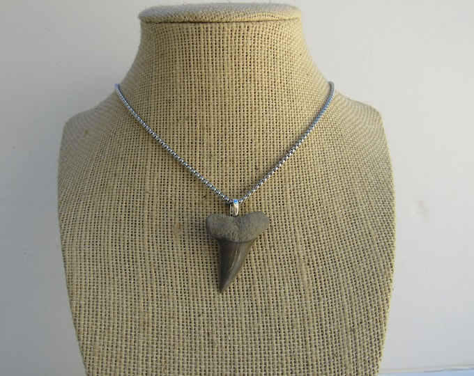 Mako Shark Tooth Pendant  Necklace Animal Tooth  Fossilized Bone Jewelry  N764