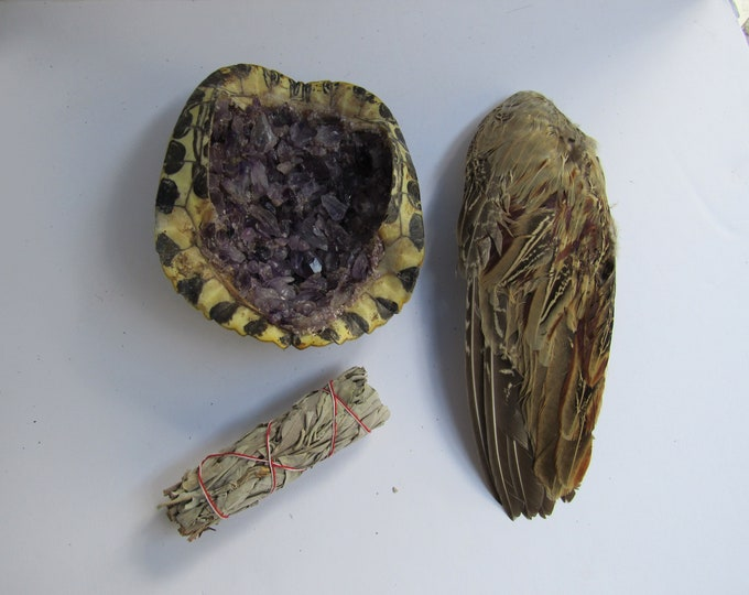 Smudge Kit Red Eared Slider Turtle Shell Encrusted in Amethyst  & Pheasant Wing Feather Fan Smudging Tribal