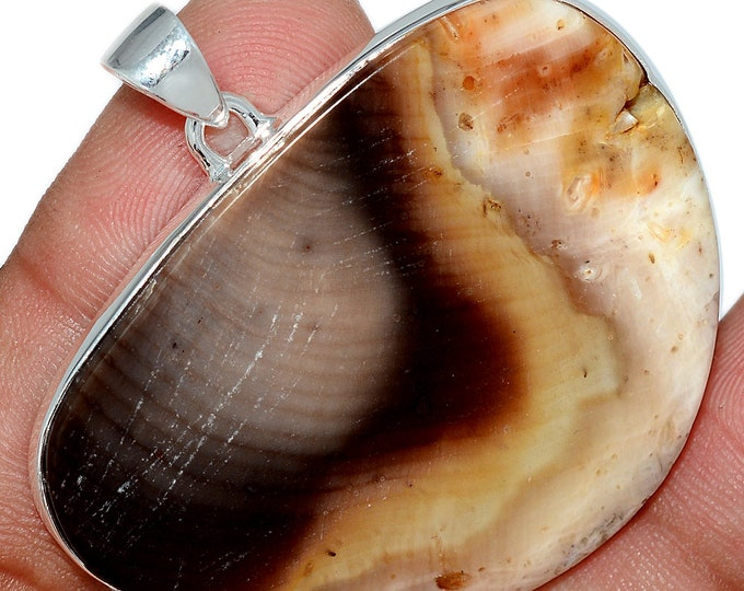 14g Araucaria  Petrified Wood  Pendant Fossil Necklace 925 SS Natural Boho Jewelry P408