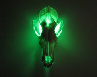 Coyote Skull Table/Night Light Remote Control Color Choice Cabin Oddities Decor